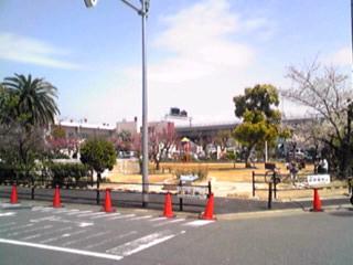 仕事場近くの公園